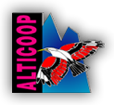 Alticoop Magasin Sports
